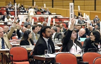 Delegates vote during the IAEA´s General Conference in Vienna, Sept. 22. (IAEA)