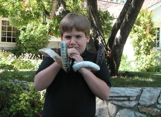 Danny Ulman, 11, tries out some of the family´s shofars outside his house in Encino, Calif. (Jane Ulman)
