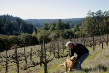 Winemaker and vintner Benyamin Cantz and his dog Lucy in his Santa Cruz, Calif., vineyards, which overlook the Pacific Ocean, January 2013.  (Chavie Lieber/JTA)