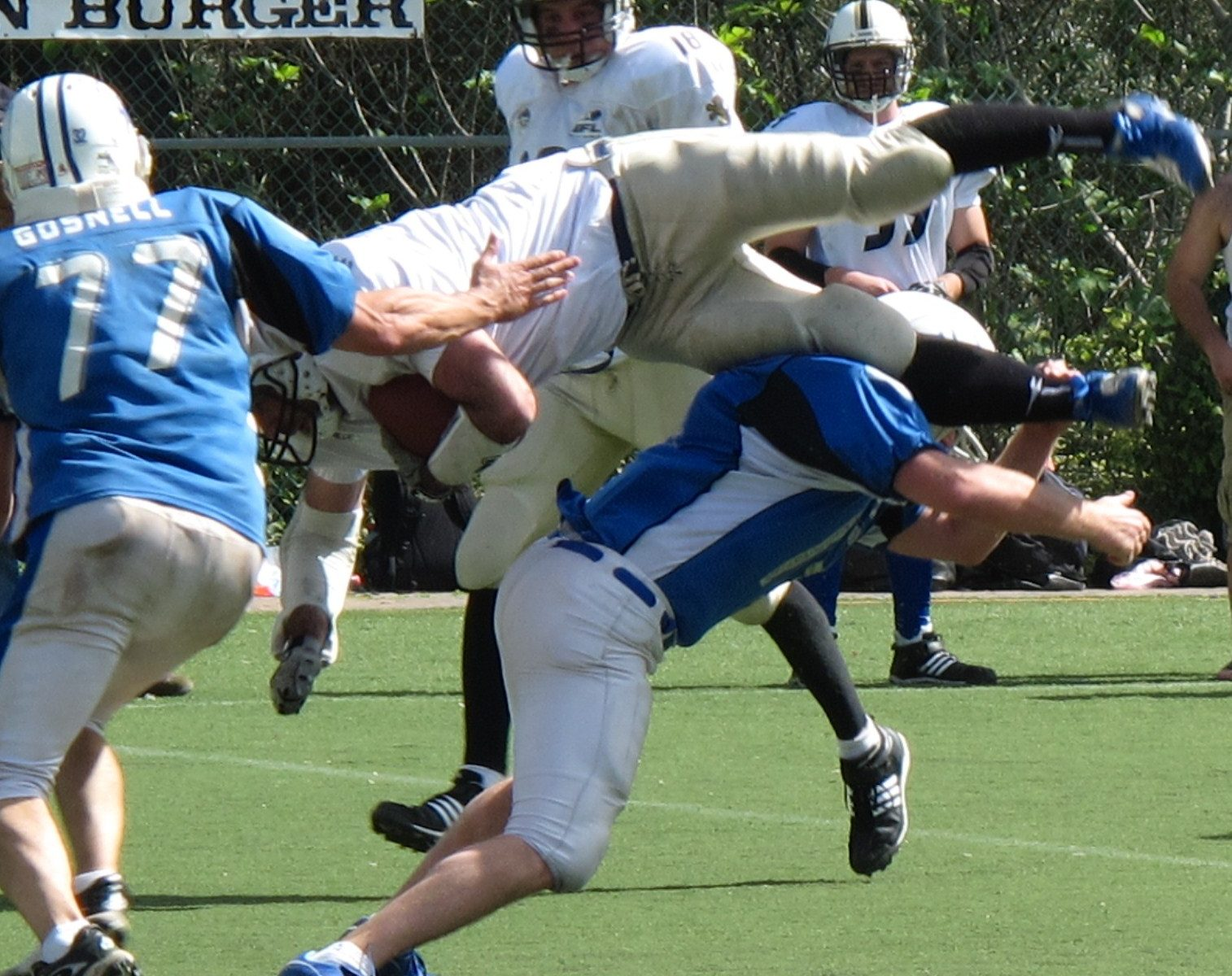 in its fifth year israeli tackle football league attracting natives