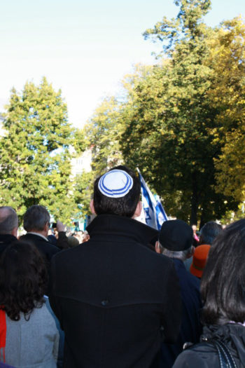 Participants at a rally at Stockholm's Raoul Wallenberg Park in solidarity with the Malmo Jewish community, Oct. 7, 2012. (Annika Hernroth-Rothstein)