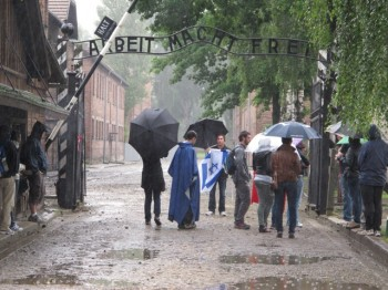Visitors to the Auschwitz Museum Memorial in Oswiecim, Poland, enter the Arbeit Macht Frei gate on a rainy day. (Ruth Ellen Gruber)