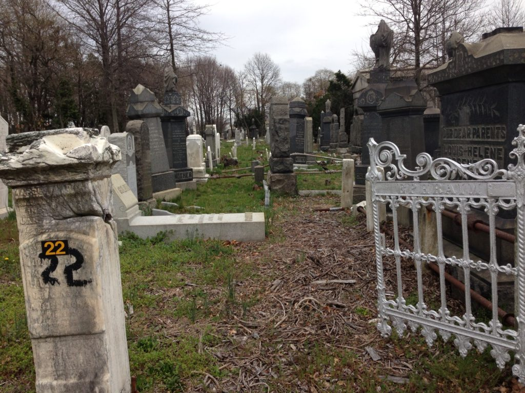 A section of New York's Bayside Cemetery in Queens after a UJA-Federation-funded cleanup. (Courtesy of the Community Association for Jewish At-Risk Cemeteries)