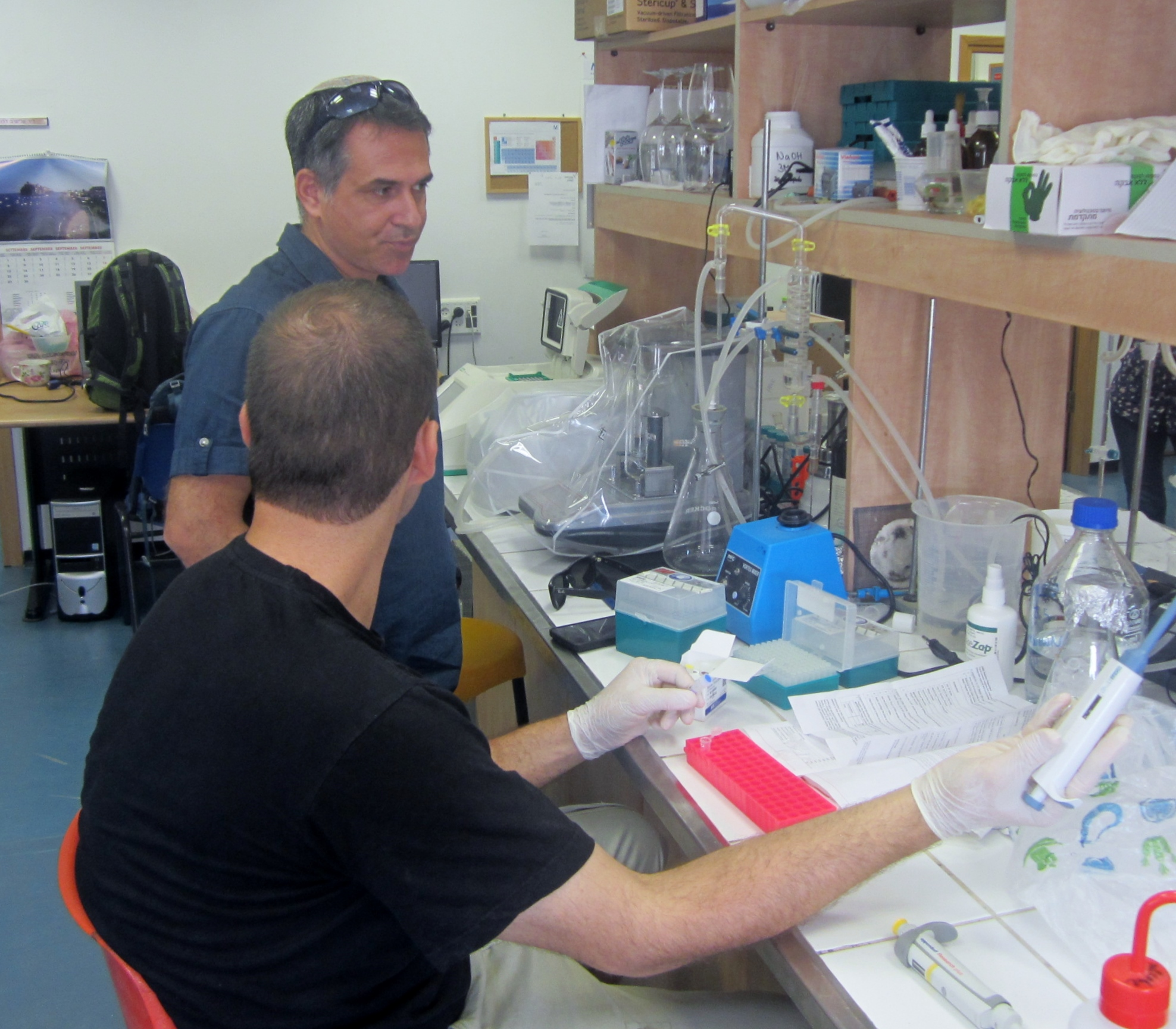 Elyashiv Drori, who has been working for years to identify and grow grapes indigenous to Israel, consulting with a researcher in his lab at Ariel University, Sept. 30, 2014. (Ben Sales)