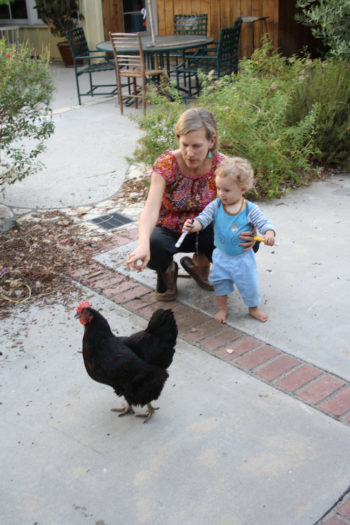 Devorah Brous with her son and chicken. (Anthony Weiss)