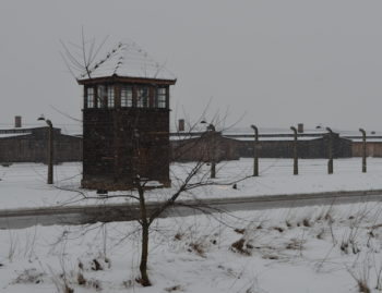 A view of Birkenau, the site of the memorial ceremony. (Toby Axelrod/JTA)