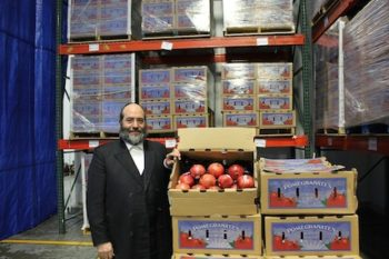 Rabbi Shulim Greenberg's organization,Chesed 24/7, receives a truckload of  pomegranates each year donated from Pom Wonderful, the nation's largest pomegranate juice producer. (Uriel Heilman)
