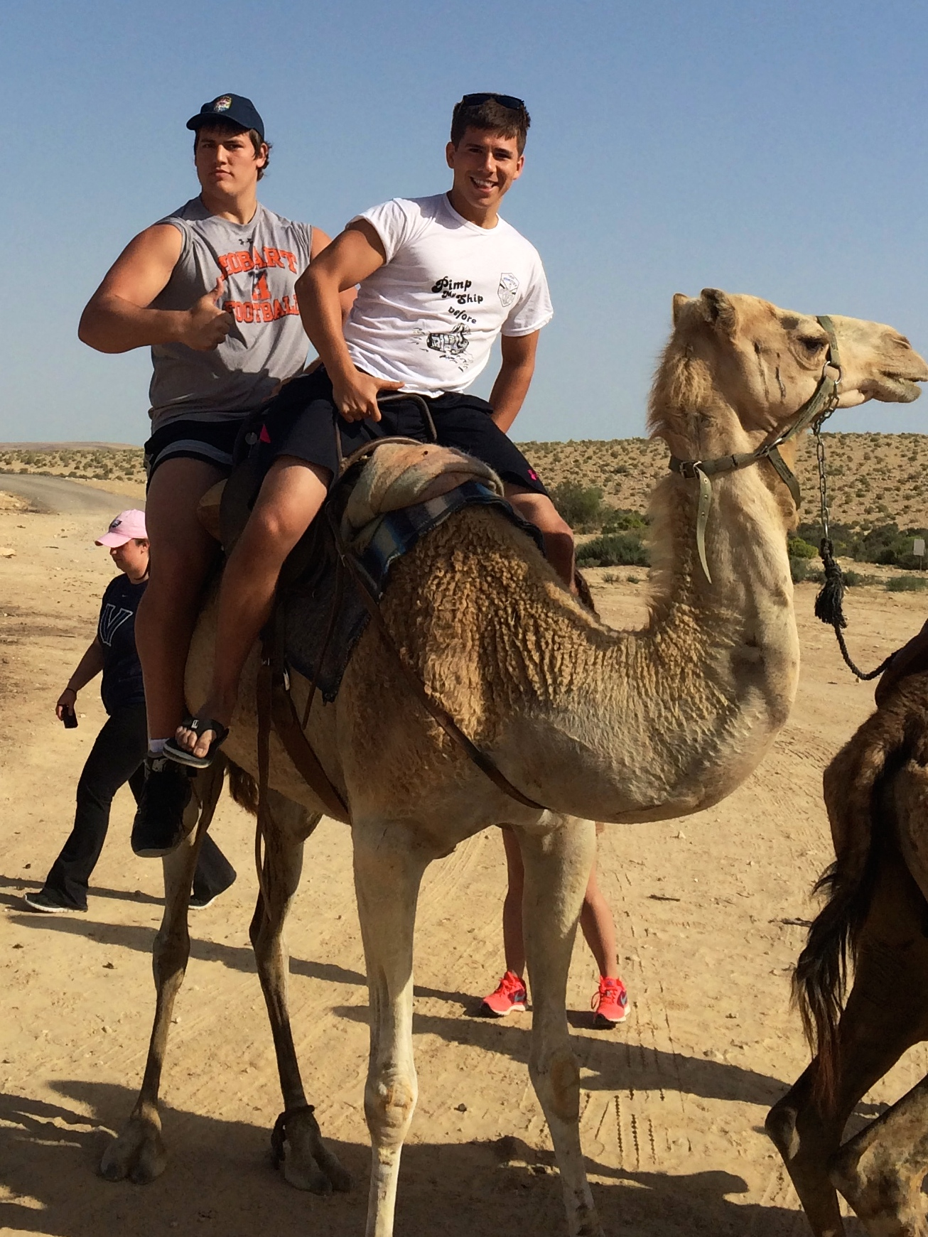 Hump day: Ali Marpet, in rear, and his longtime friend Jake Fuerst riding a camel during a Birthright Israel trip in the summer of 2014. (Courtesy of Jake Fuerst)