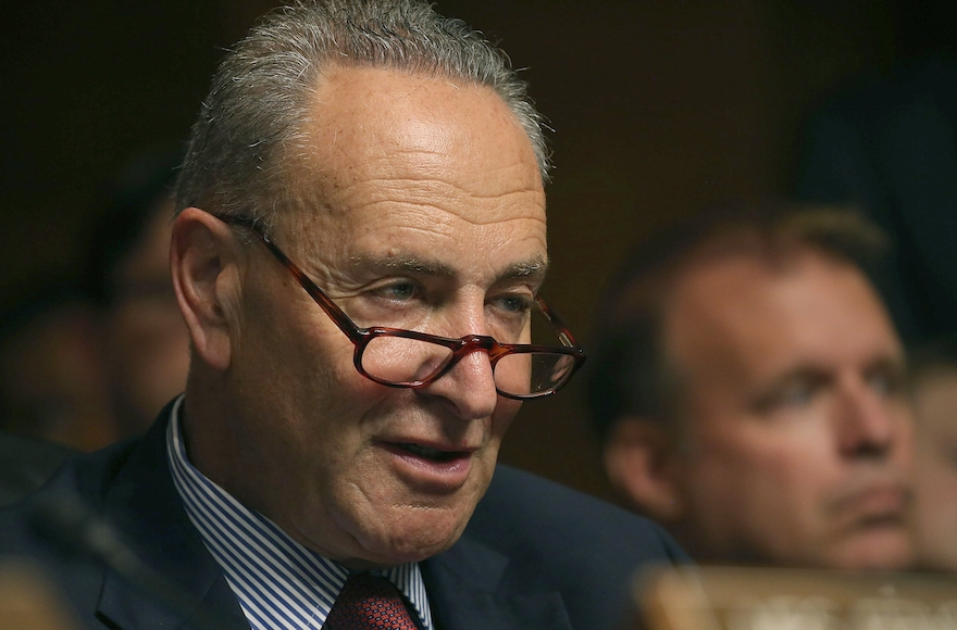 Sen. Charles Schumer participating in a Senate Judiciary Committee hearing on Capitol Hill, July 8, 2015. Schumer, a New York Democrat, is seen as a key vote on the Iran deal. (Mark Wilson/Getty Images)