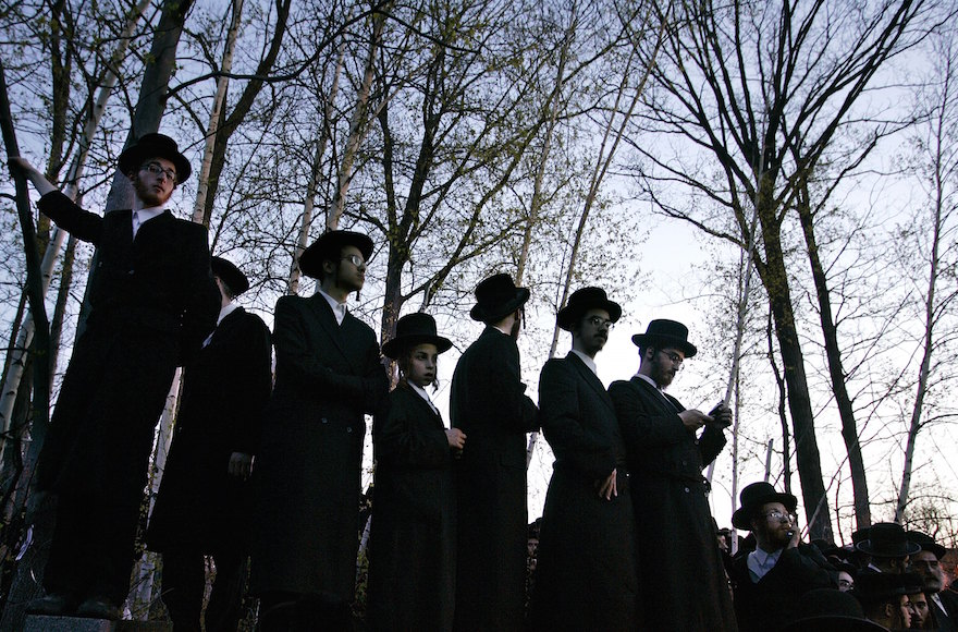 Hasidic Jews standing on a wall amongst trees as they try to see the burial of Rabbi Moses Teitelbaum, April 25, 2006, in Kiryas Joel, New York. (Stephen Chernin/Getty Images)