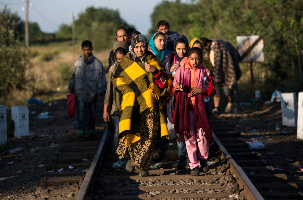 Migrants crossing into Hungary from Serbia, Sept. 8, 2015. (Dan Kitwood/Getty Images)