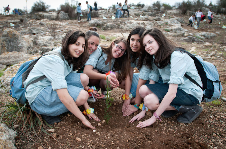 Young Jews planting trees in Israel in honor of Tu Bishvat, the festival marking the new year for trees. (Omer Miron/Flash90)