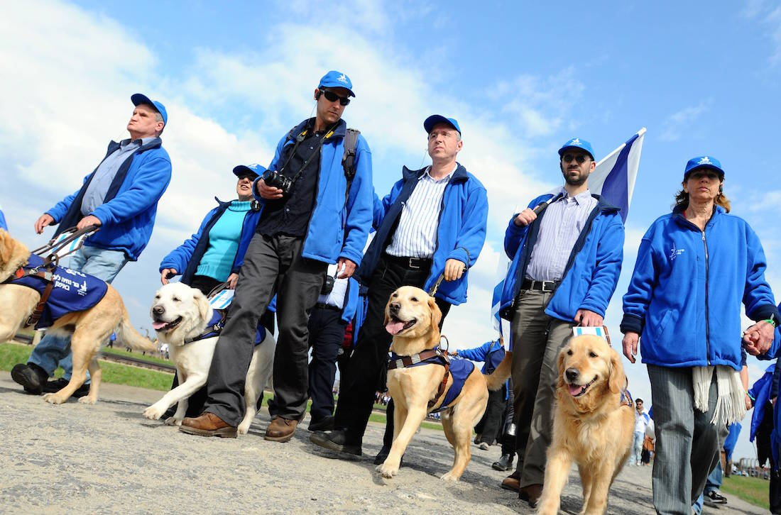 Participants in the March of the Living walking with their guide dogs. (Yossi Zeilger)