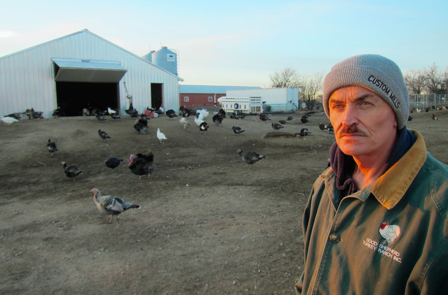 Frank Reese, owner of the Good Shepherd Poultry Ranch, which raises only heritage birds. (Victor Wishna)