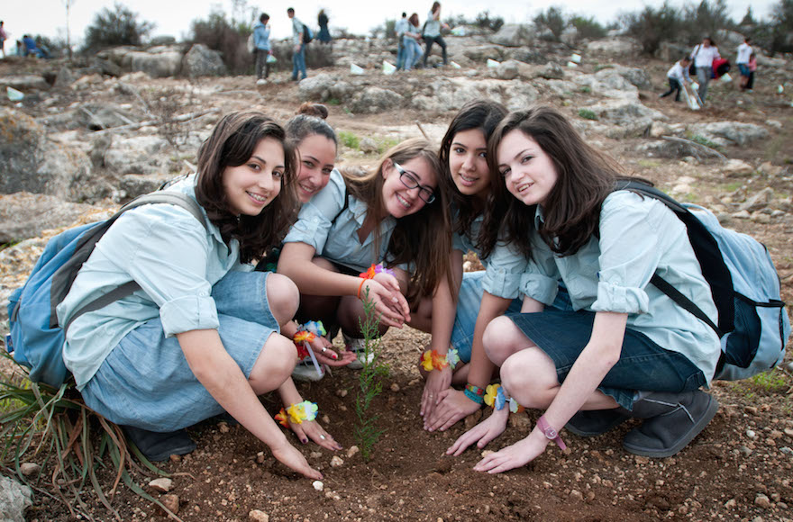 "Young Jewish children plant trees as they participate in an event organized by the Keren Kayemet LeIsrael, for the upcoming Jewish holiday of Tu Bishvat in the Ben Shemen forest on February 06, 2012. Tu Bishvat is a Jewish holiday occurring in late winter/early spring marking the ""New Year for Trees"". Photo by Omer Miron/Flash90"