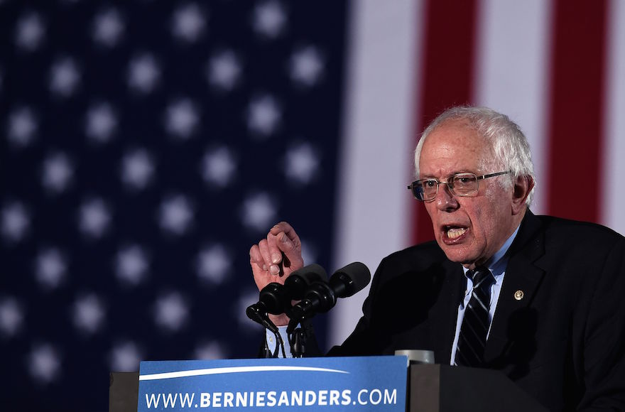 Bernie Sanders making his victory speech in Concord after winning the New Hampshire Democratic primary, Feb. 9, 2016. (Jewel Samad/AFP/Getty Images)