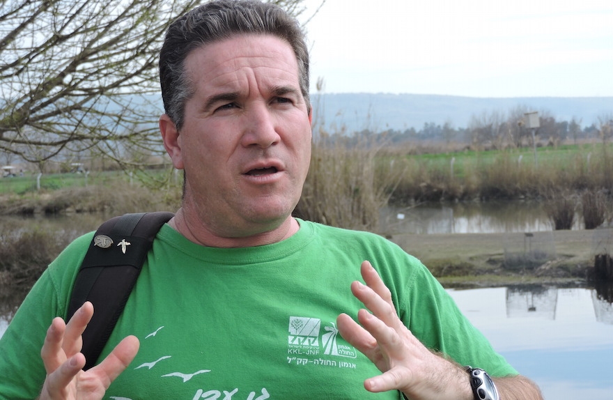 Shai Agmon is director of the Hula Valley Avian Research Center for Keren Kayemeth L'Yisrael-Jewish National Fund, which manages the valley's birdwatching park. (Ben Sales)