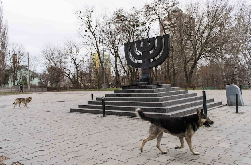 dogs and the holocaust In the midst of recovering from a grisly health scare, a holocaust survivor shares  the story of his encounter with a high profile nazi's dog.