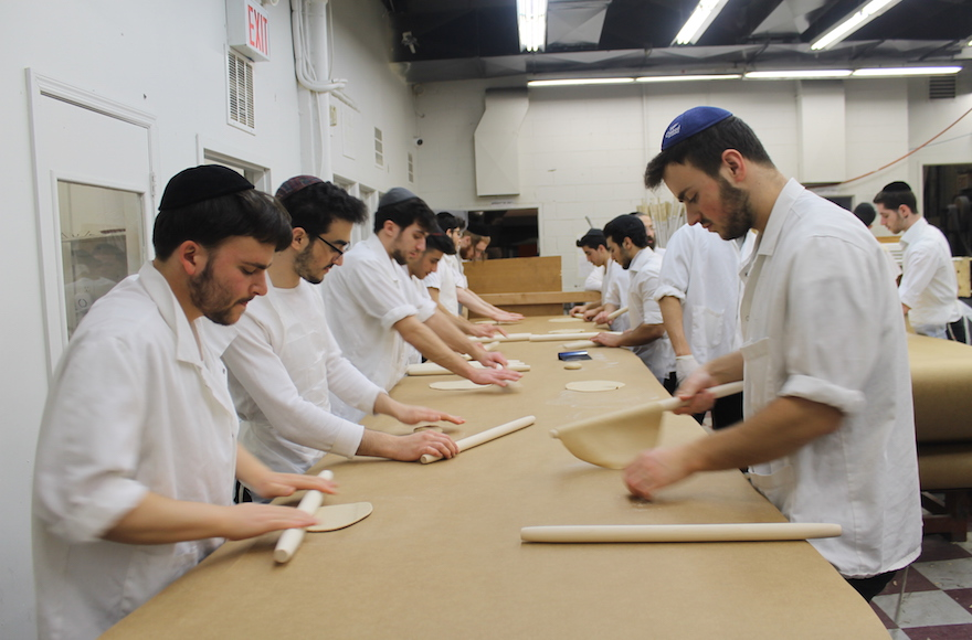 Matzah dough is rolled into thin, round discs before it is perforated and baked. Every 15 minutes at the Satmar Bakery in Brooklyn, the work ceases while all surfaces are scoured or replaced and all hands are washed to remove stray bits of dough. (Uriel Heilman)