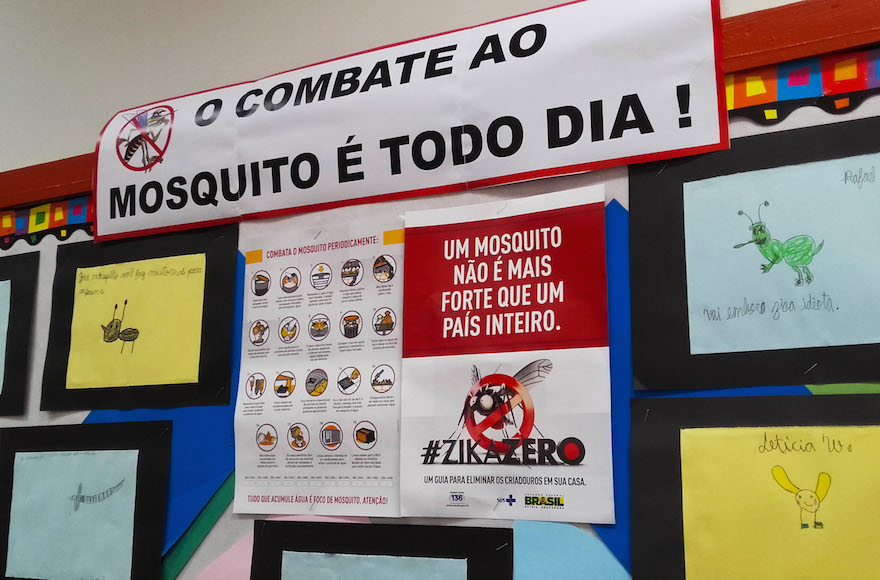 At Brazil's largest Jewish school, the Liessin school, students are participating in the Zika Zero campaign. (Marcus Moraes)