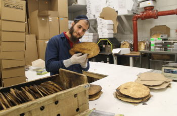 Every shmura matzah is inspected for quality and adherence to kosher standards before it's boxed. (Uriel Heilman)