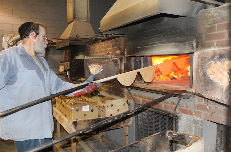 It takes about 20 seconds in a 1,300-degree, coal-and-wood-fired oven to bake shmurah matzah to perfection. (Uriel Heilman)