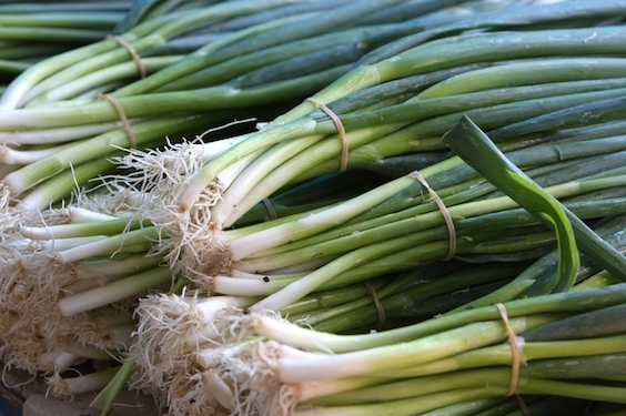 Make a Sephardic Seder, Whip Your Friends With Scallions