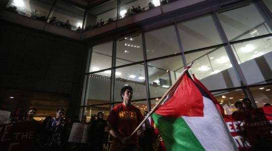 Hunter College Palestinian flag