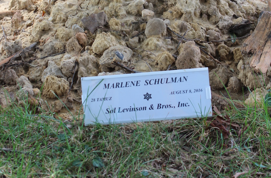 The grave of Marlene Schulman, who died in Baltimore on Aug. 3 and was buried two days later. The marker is incorrect. (Hillel Kuttler)