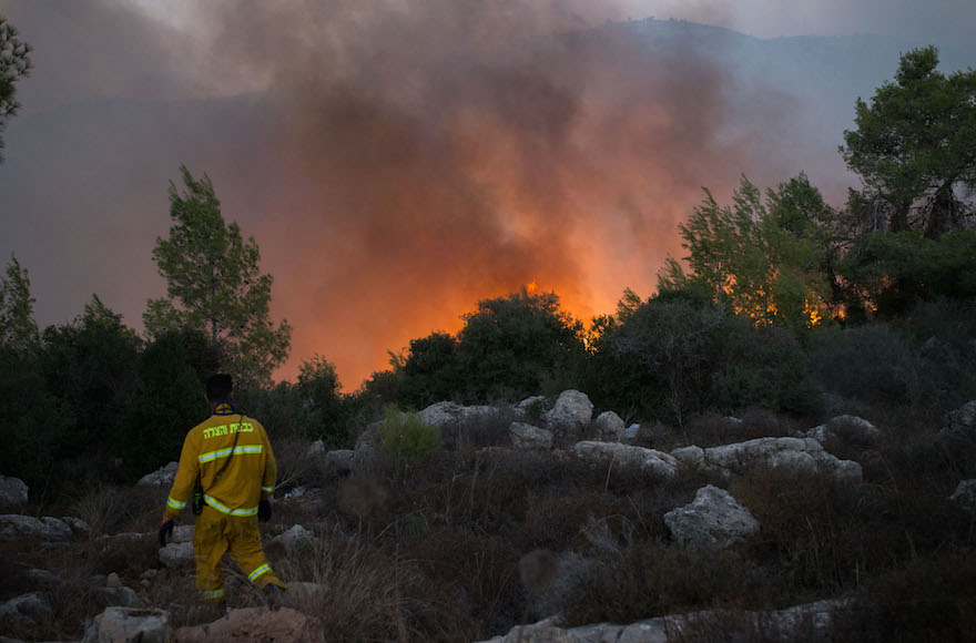 Fire fighters trying to extinguish a wildfire, which broke out at the entrance to Nataf, outside Jerusalem, Nov. 25, 2016. (Yonatan Sindel/Flash90)