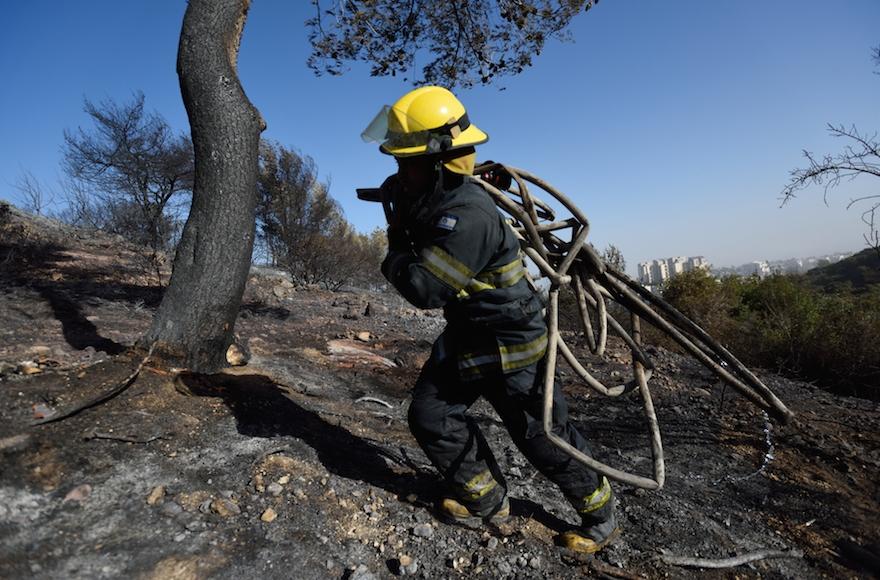 An Israeli firefighter trekking through a forest burned by a massive forest in Haifa, Israel, Nov. 25, 2016. (Gili Yaari /Flash90)