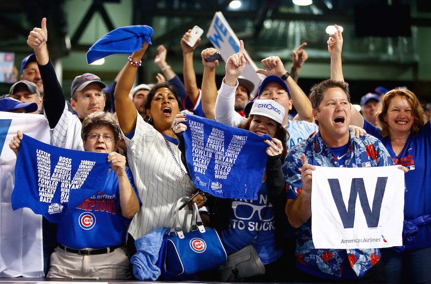 Image result for Chicago cubs fan images