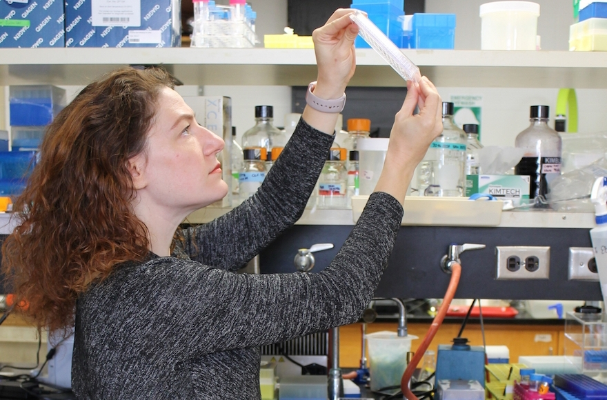 Dr. Joanna Slusky, a professor of molecular biosciences and computational biology at the University of Kansas, at work in her lab. (Sarah Mullinax)
