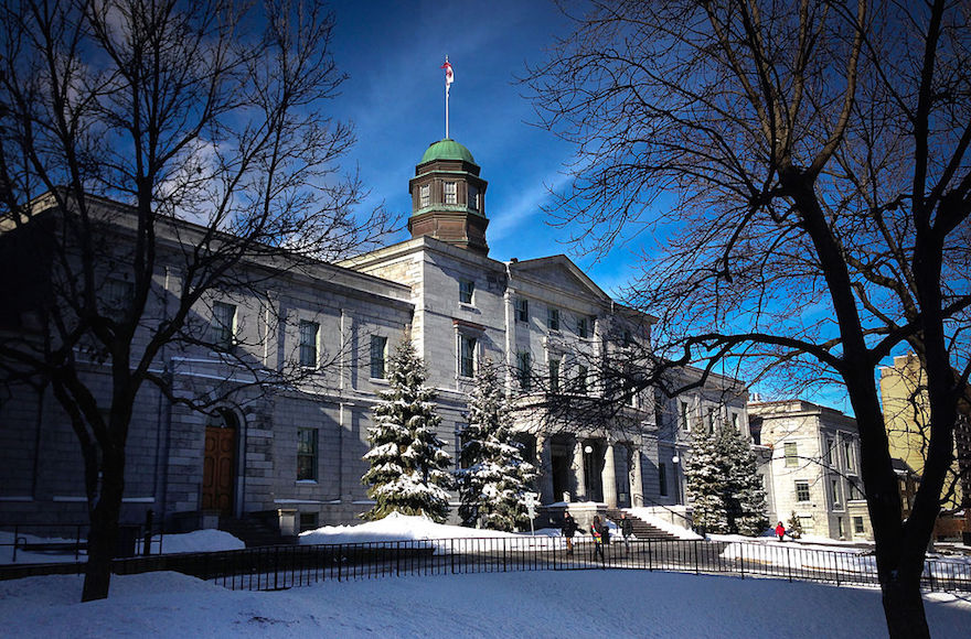 Jewish student government member at McGill U ordered to cancel trip to Israel or resign - Jewish Telegraphic Agency