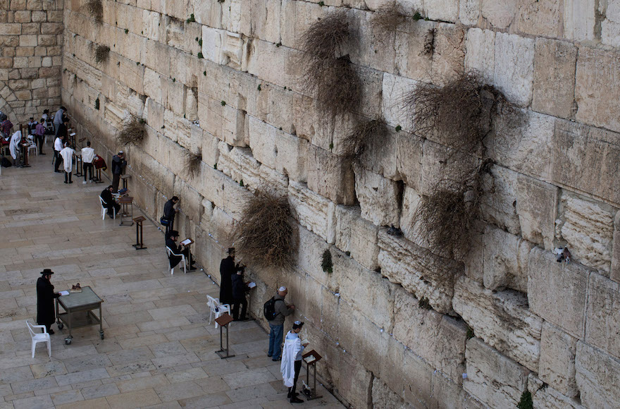 israel freezes western wall compromise that was to create