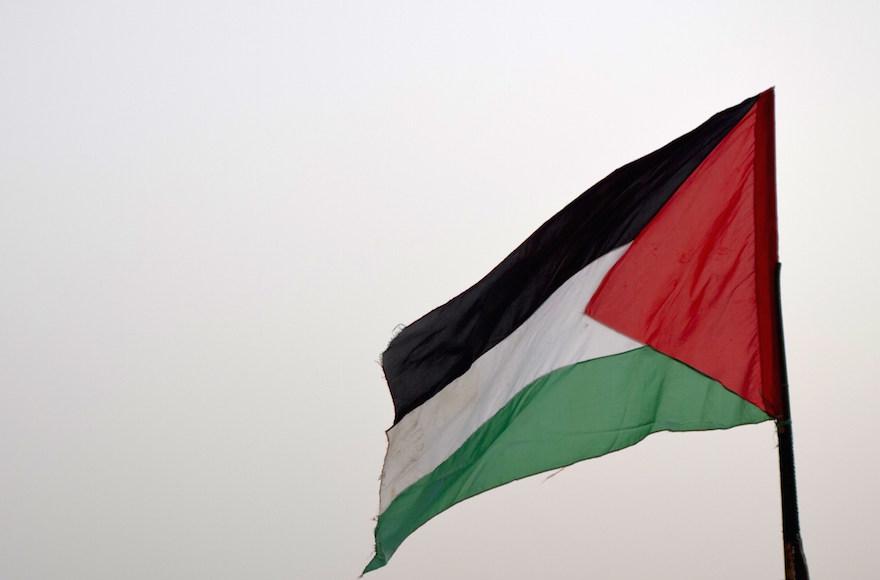 Plo flag gaza strip