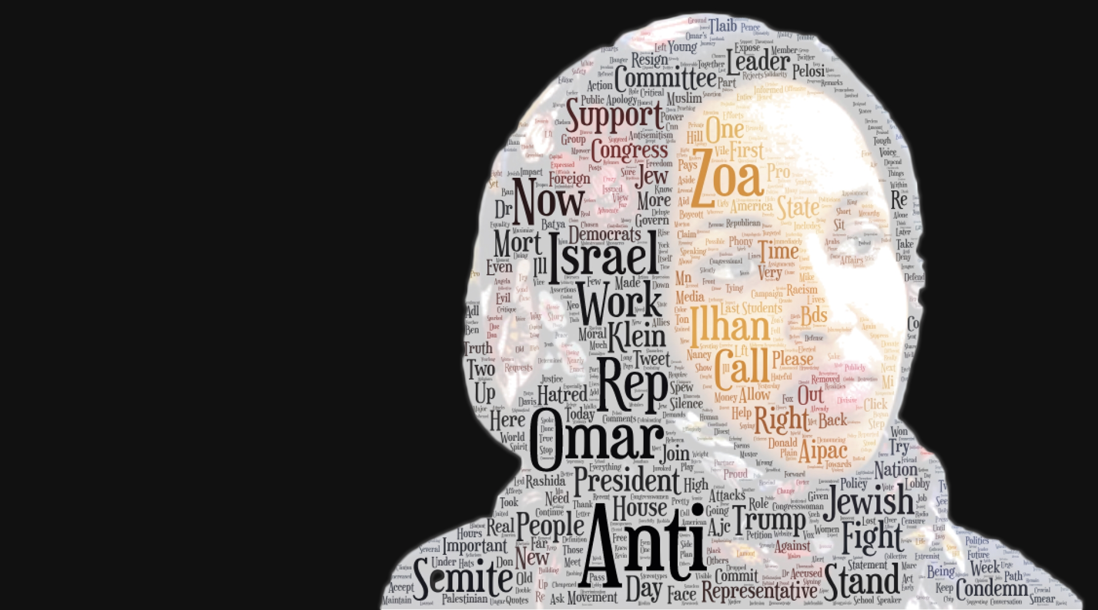ilhan omar - and her opponents
