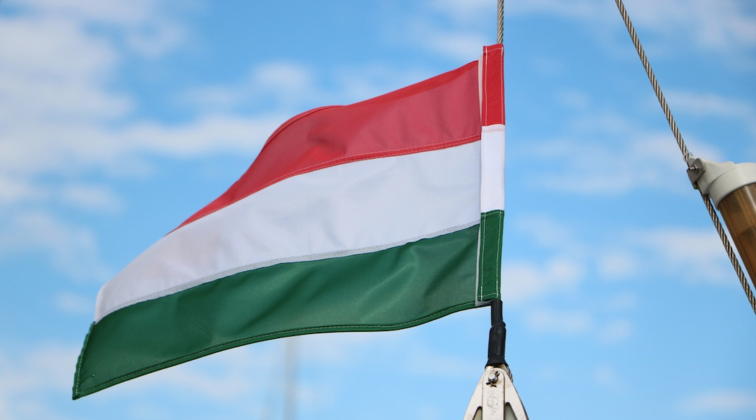 Hungary's population has highest amount of Ashkenazi genes