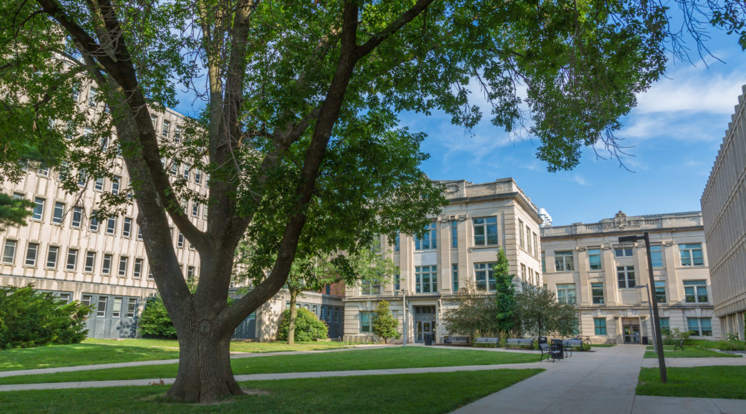 A view of the University of Iowa campus in Iowa City, Iowa. (Wikimedia Commons)