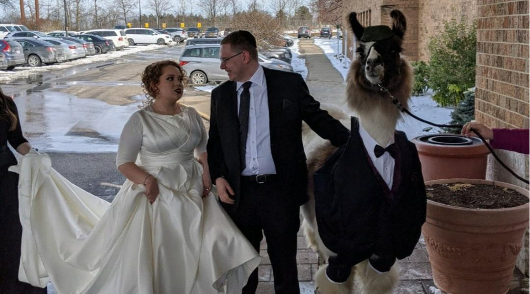 Mendl Weinstock and his sister Riva posing for a picture with Shocky the llama in Cleveland, Ohio on March 1, 2020. (Courtesy of Mendl Weinstock)