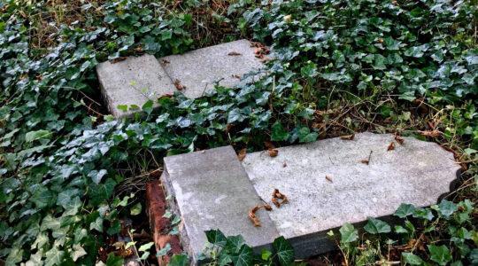 Toppled headstones at the Jewish cemetery of Zabrze, Poland on Sept. 11, 2020. (Dariusz Walerjański)