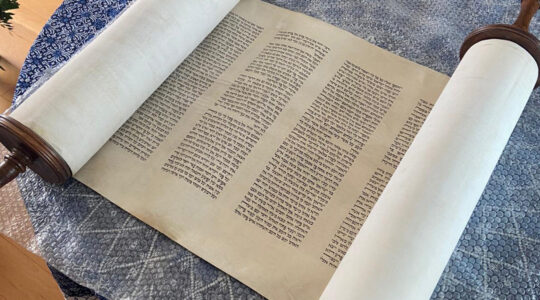 The lost Torah scroll of Dordrecht, the Netherlands, measures 45 yards in lengths. (Courtesy of NIG)