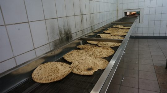 Matzahs travel on the production line of the Tiferet HaMatzot factory in Dnepro, Ukraine on Dec. 8, 2014. (Cnaan Liphshiz/JTA)