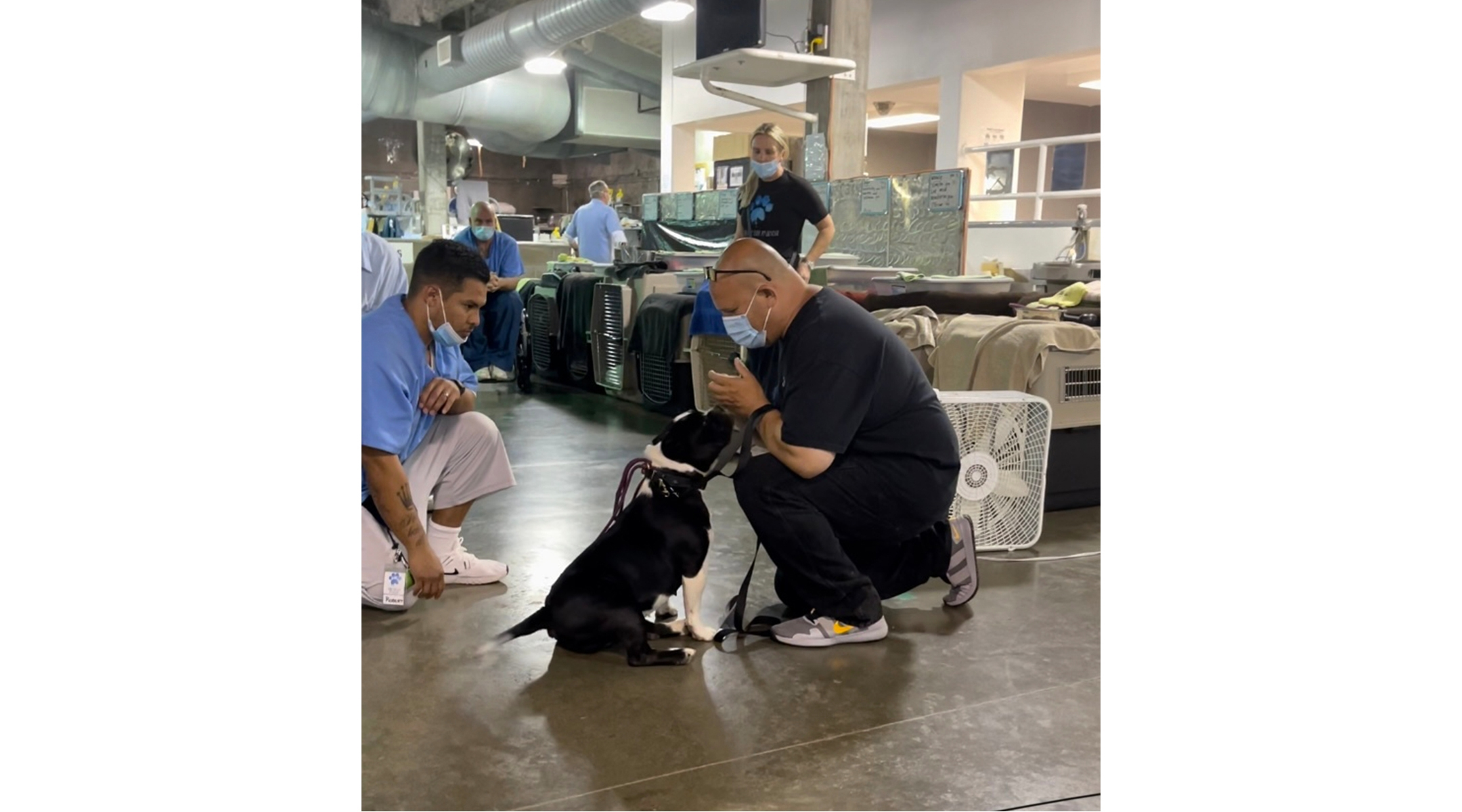 In prison, a man tends to a dog.