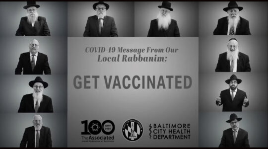 rabbis urge vaccines