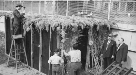 Sukkah Ellis Island 1948