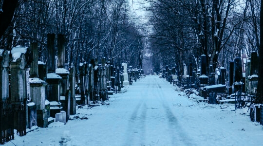 Snow falls on the Okopowa Street Jewish cemtery in Warsaw, Poland. (Jaap Arriens/NurPhoto via Getty Images)