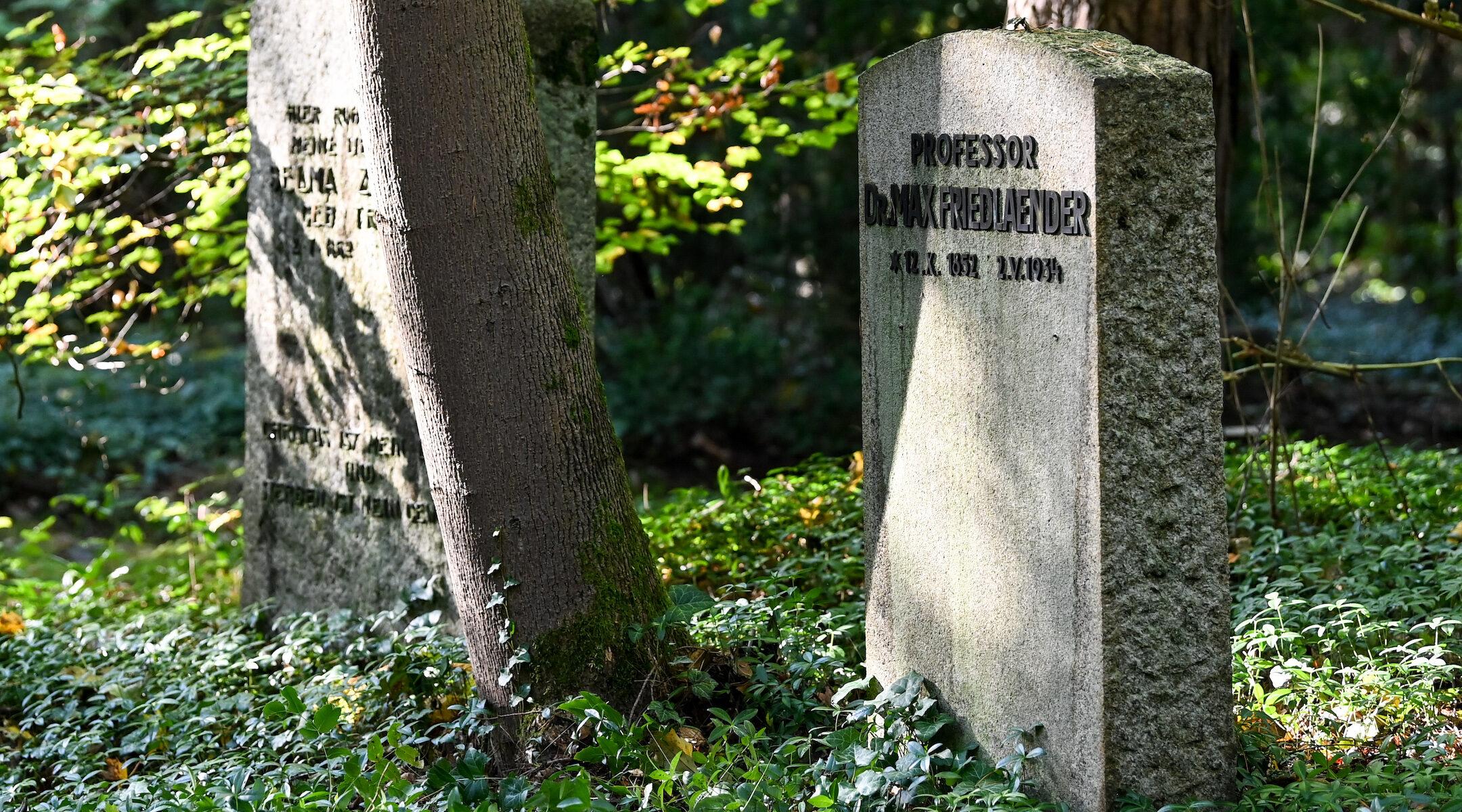 Friedländer grave Berlin neo-nazi